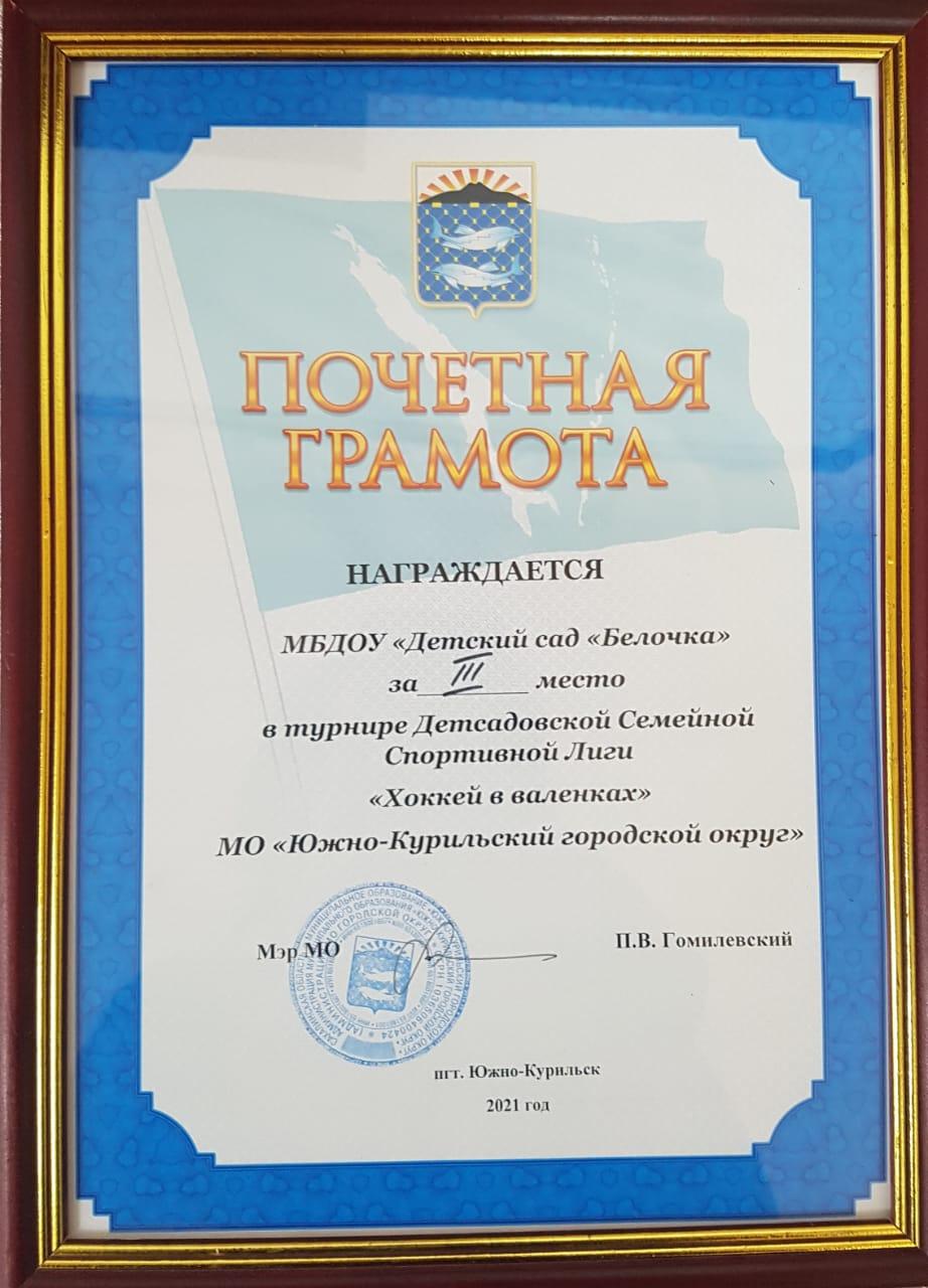 диплом за победу 3 место
